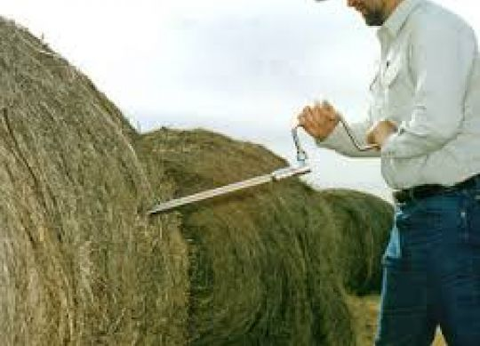 Forage Analysis: What Numbers Do I Need