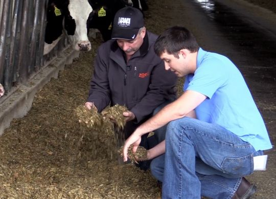 Cutting Feed Costs Without Compromising Profitability