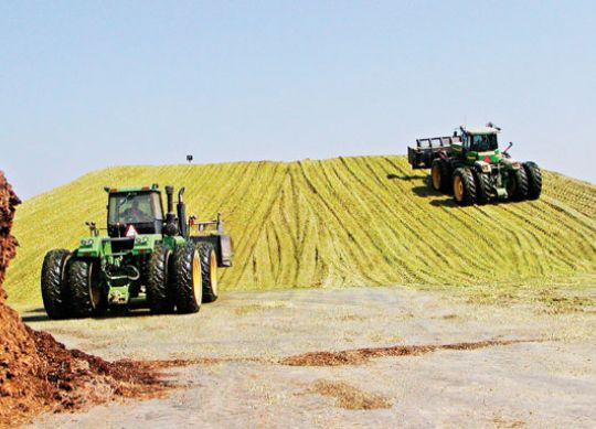 Managing Feed Inventories