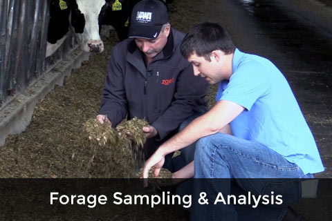 Forage Sampling & Analysis